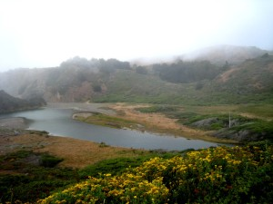 Mendocino Shoreline---Beautiful even in partial fog